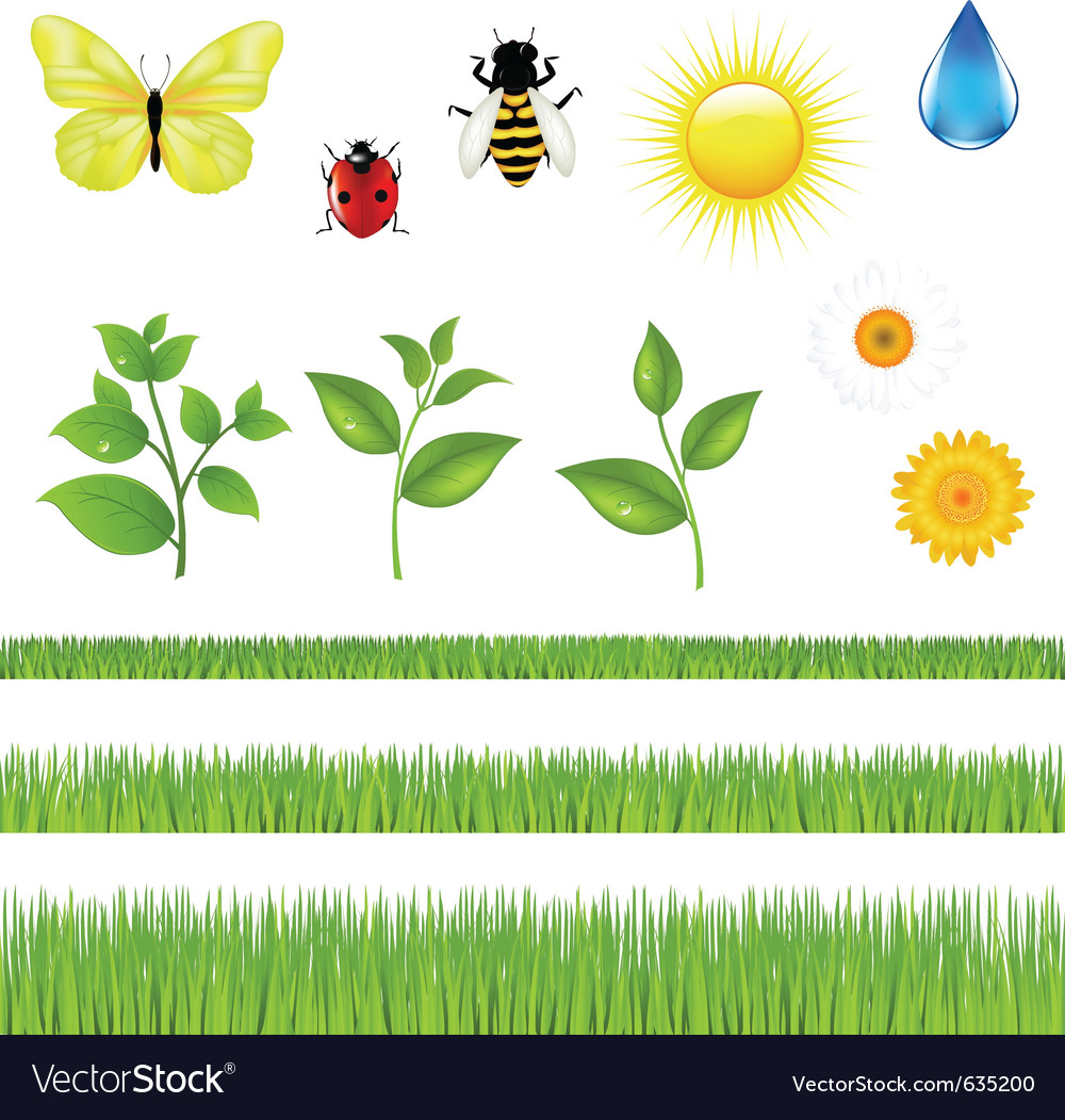 Nature set with grass vector | Price: 1 Credit (USD $1)
