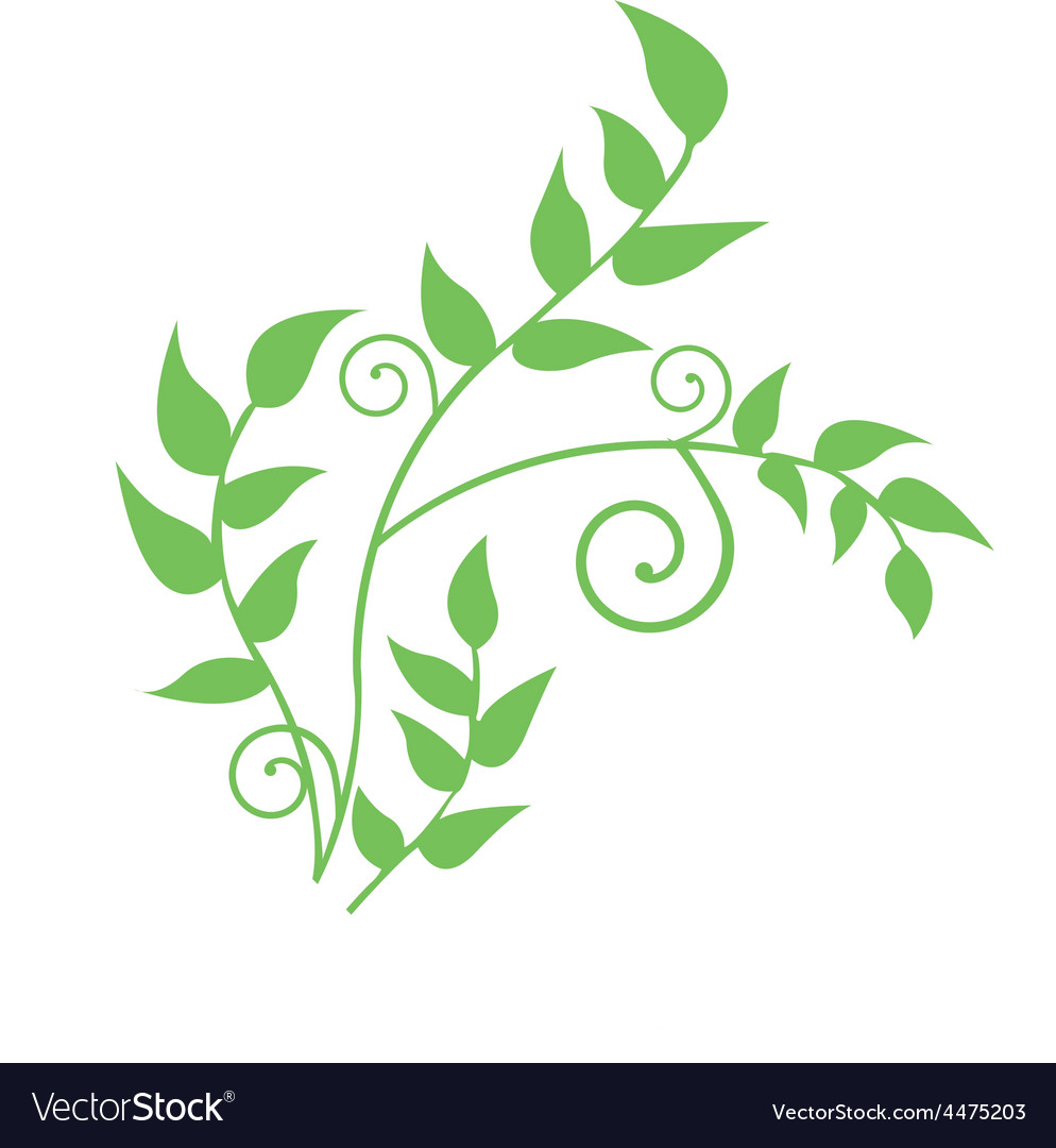 Leaf design vector | Price: 1 Credit (USD $1)
