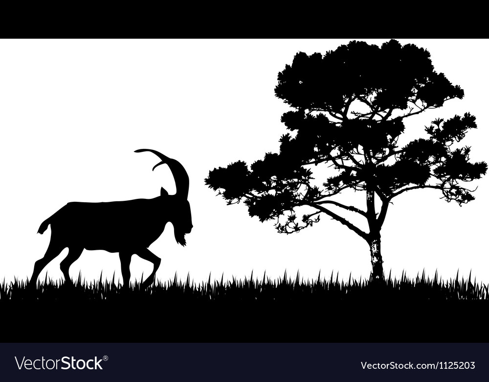 Silhouette of goat and tree vector | Price: 1 Credit (USD $1)