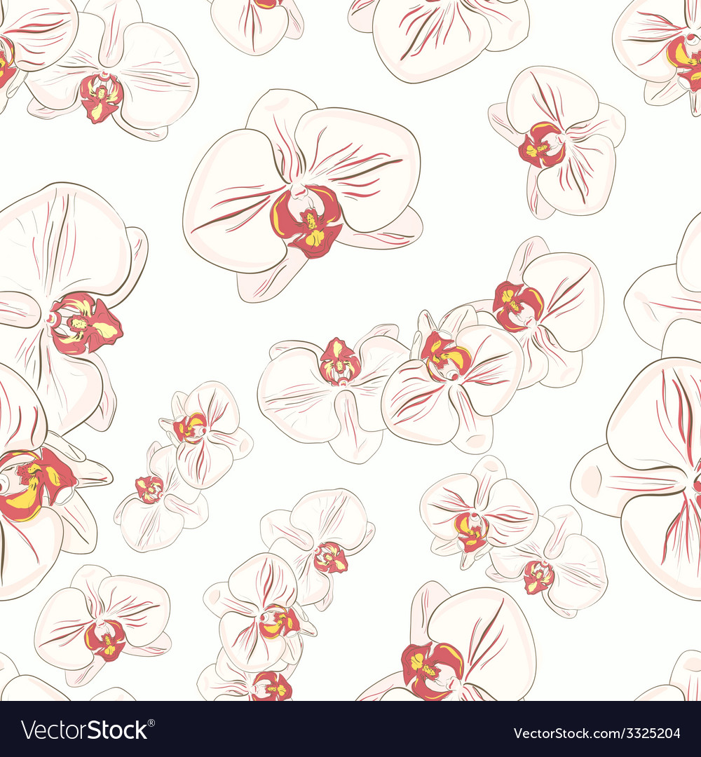 Orchids2 vector | Price: 1 Credit (USD $1)