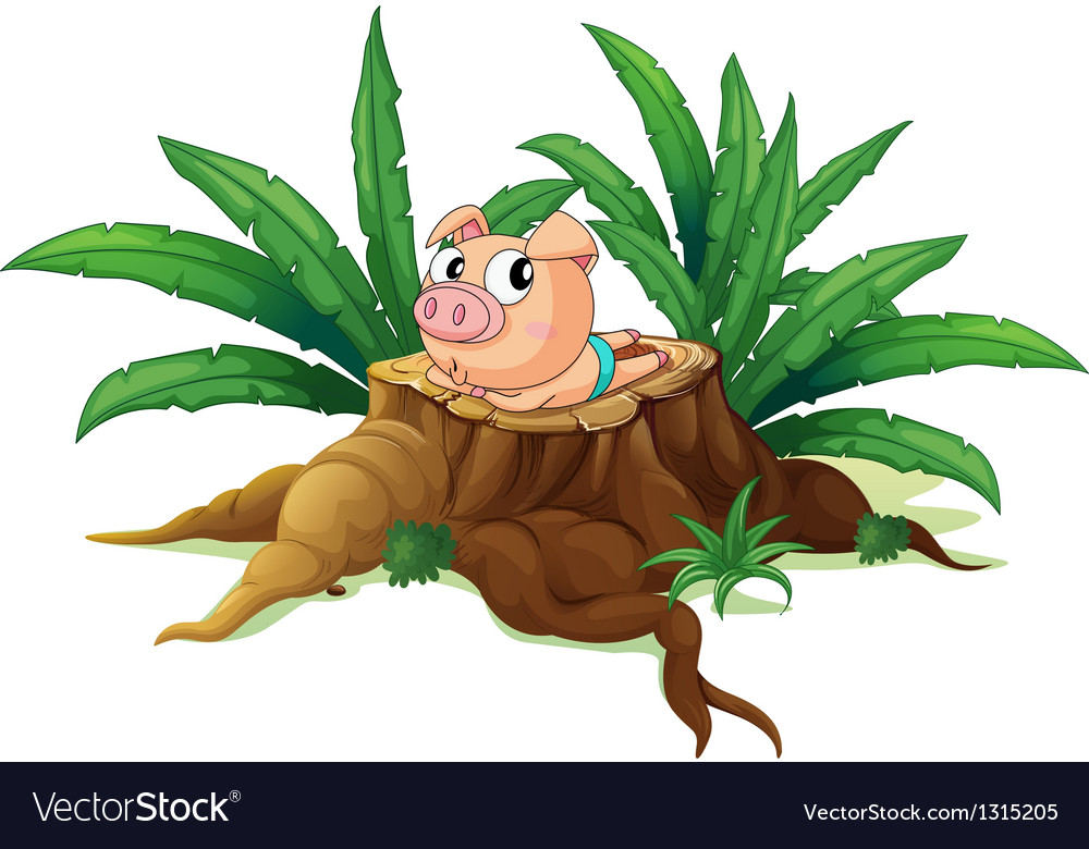 A pig lying down above the wood vector | Price: 1 Credit (USD $1)