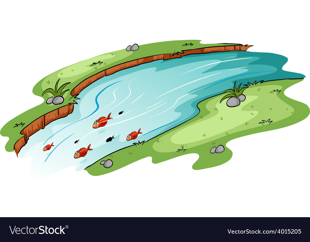 A river with a school of fish vector | Price: 1 Credit (USD $1)