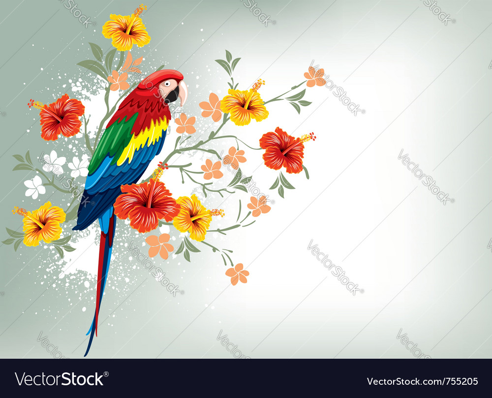 Bright parrots sitting on a branch vector | Price: 3 Credit (USD $3)