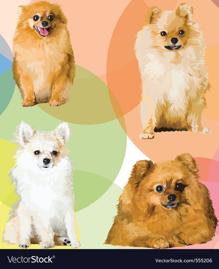 Dogs vector | Price: 3 Credit (USD $3)