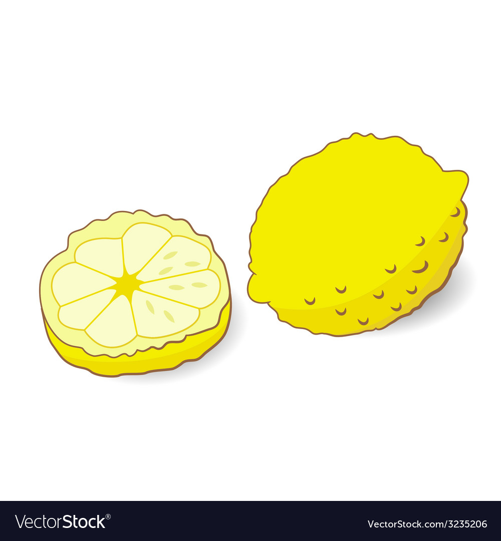 Yellow lemon isolated vector | Price: 1 Credit (USD $1)