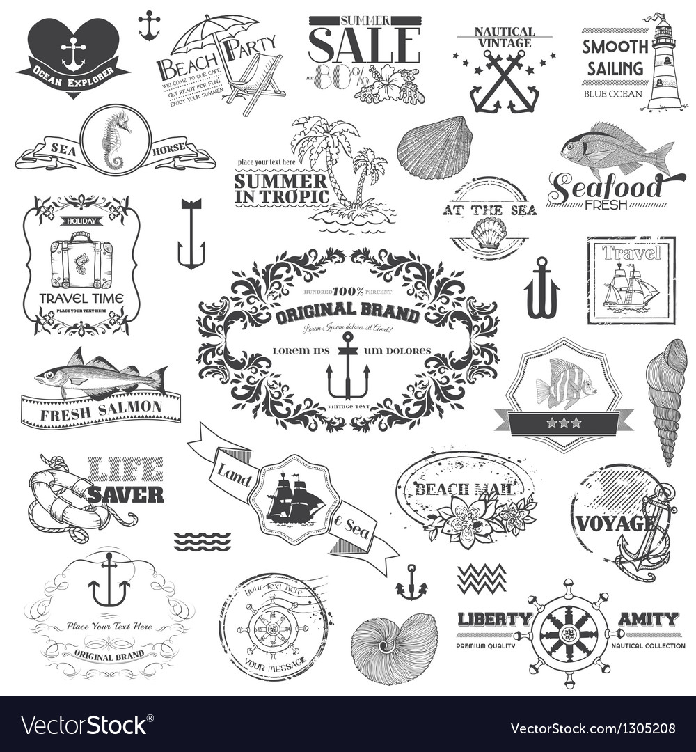Nautical sea calligraphic elements vector | Price: 1 Credit (USD $1)