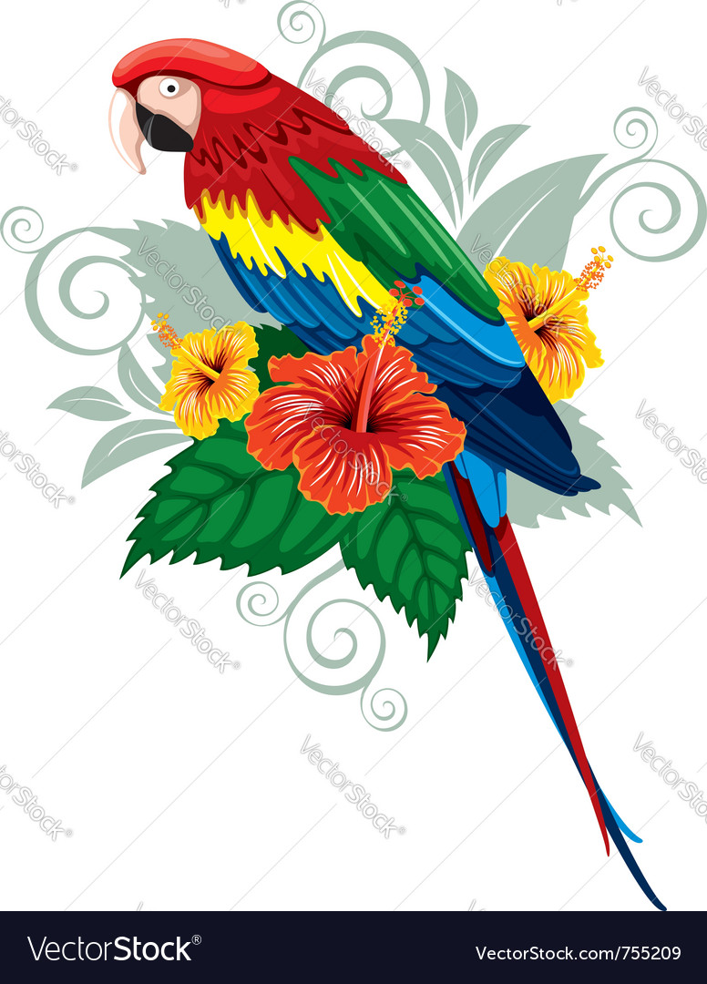 Bright parrot vector | Price: 3 Credit (USD $3)