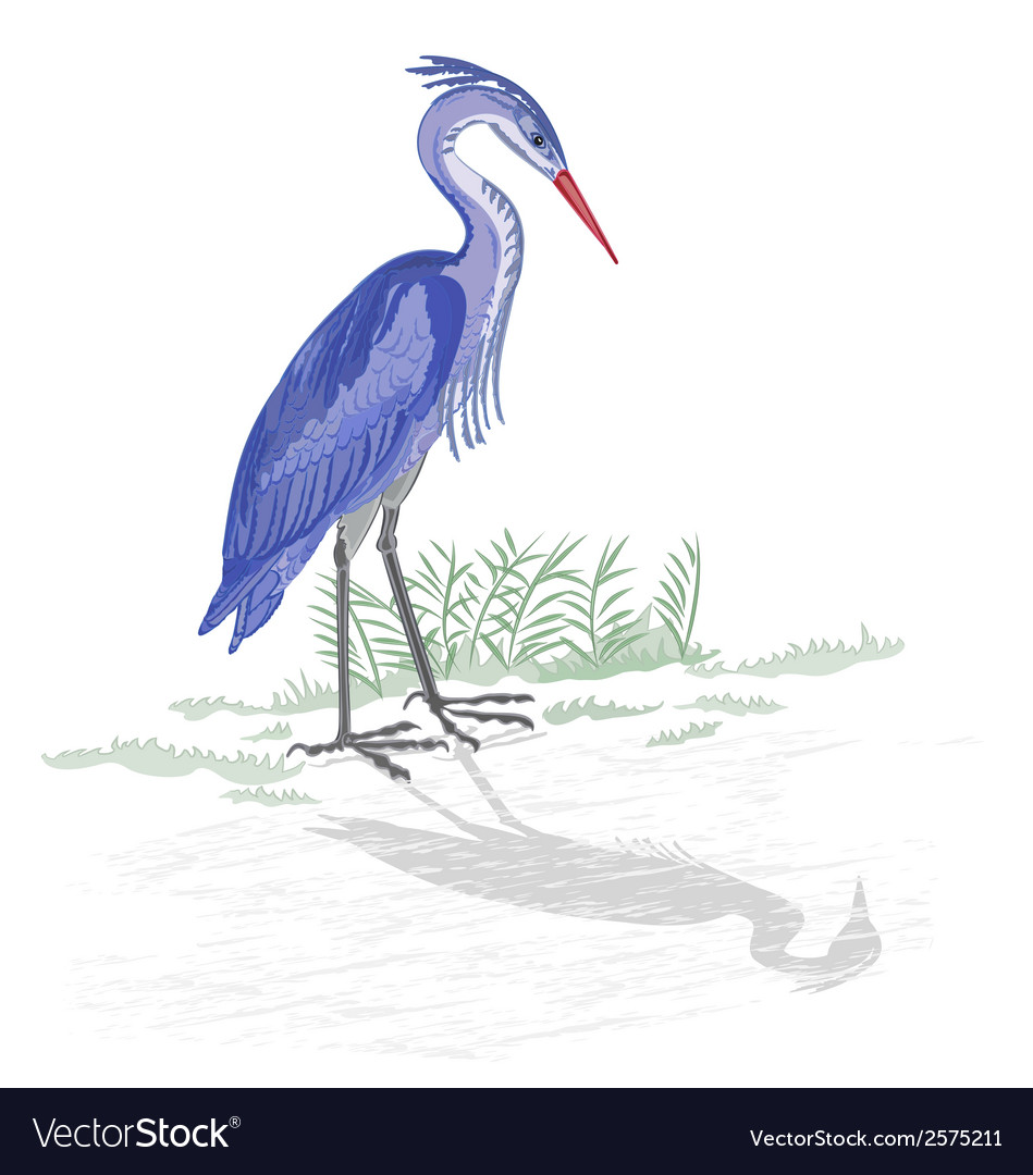 Heron-by-the-lake vector | Price: 1 Credit (USD $1)