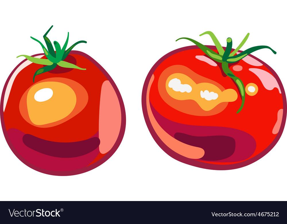 Big ripe red fresh tomato vector | Price: 1 Credit (USD $1)