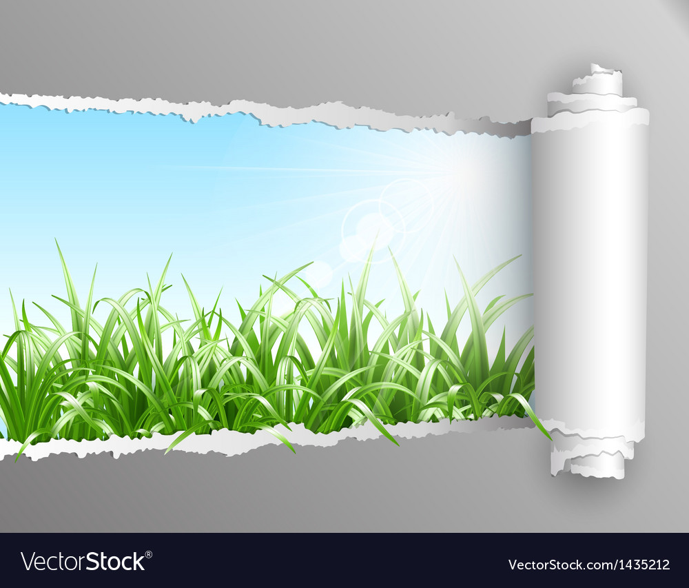 Torn paper with grass background vector | Price: 1 Credit (USD $1)