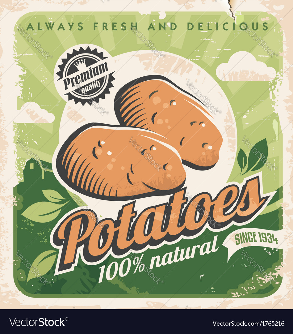 Vintage poster template for potato farm vector | Price: 1 Credit (USD $1)