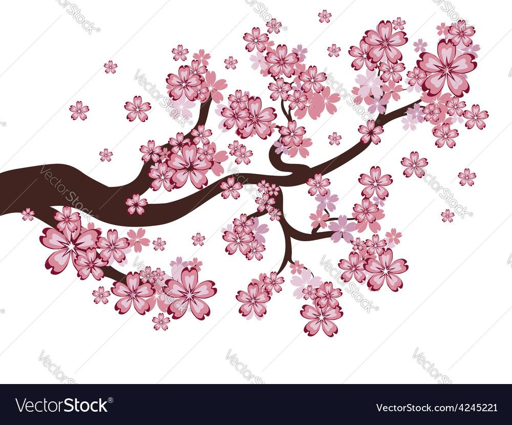Blooming sakura branch vector | Price: 1 Credit (USD $1)