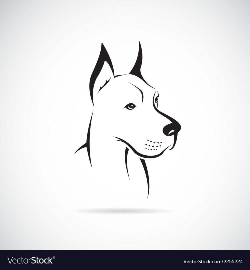Dod great dane vector | Price: 1 Credit (USD $1)