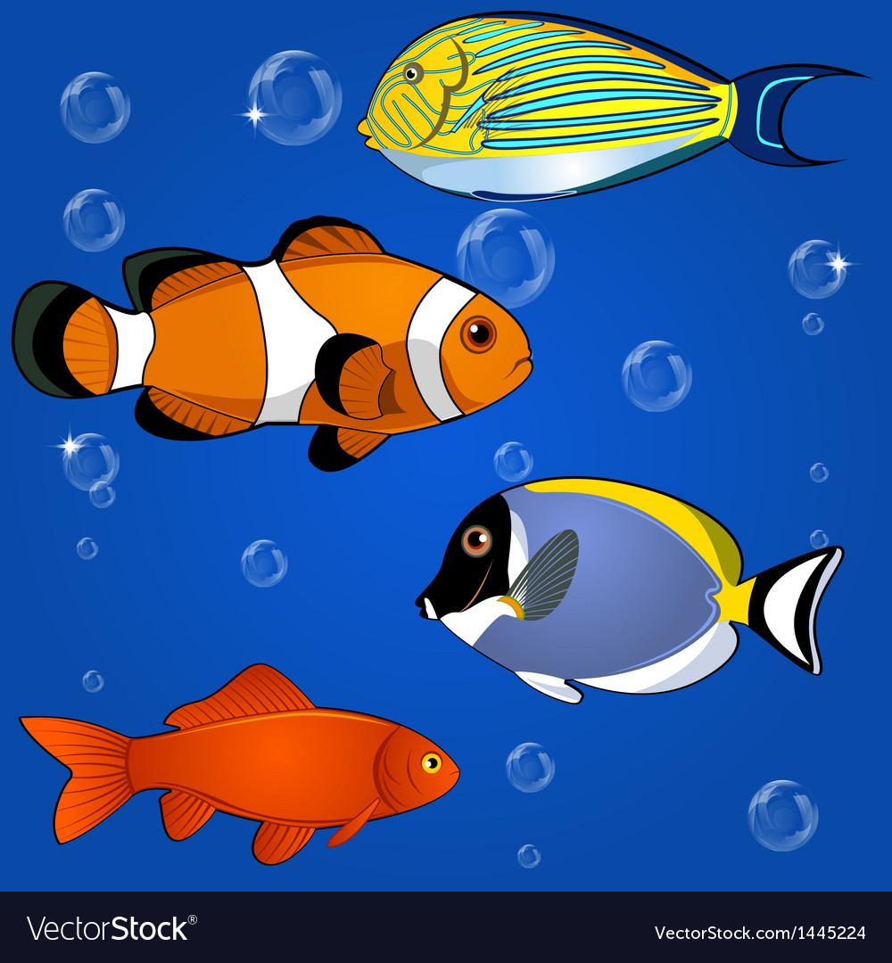 Tropical fish set vector | Price: 1 Credit (USD $1)