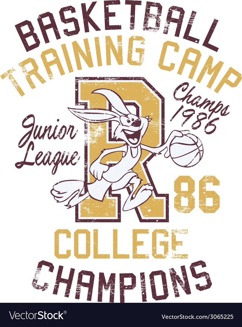 Rabbit basketball training camp vector | Price: 1 Credit (USD $1)