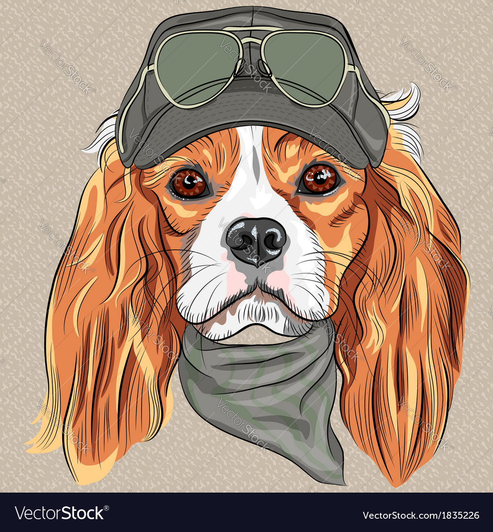 Hipster red dog cavalier king charles spaniel vector   Price: 1 Credit (USD $1)