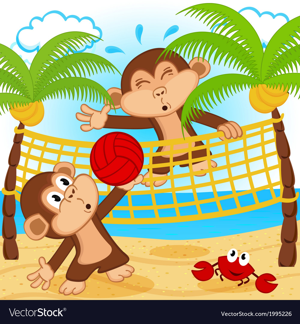 Monkeys playing in beach volleyball vector | Price: 1 Credit (USD $1)