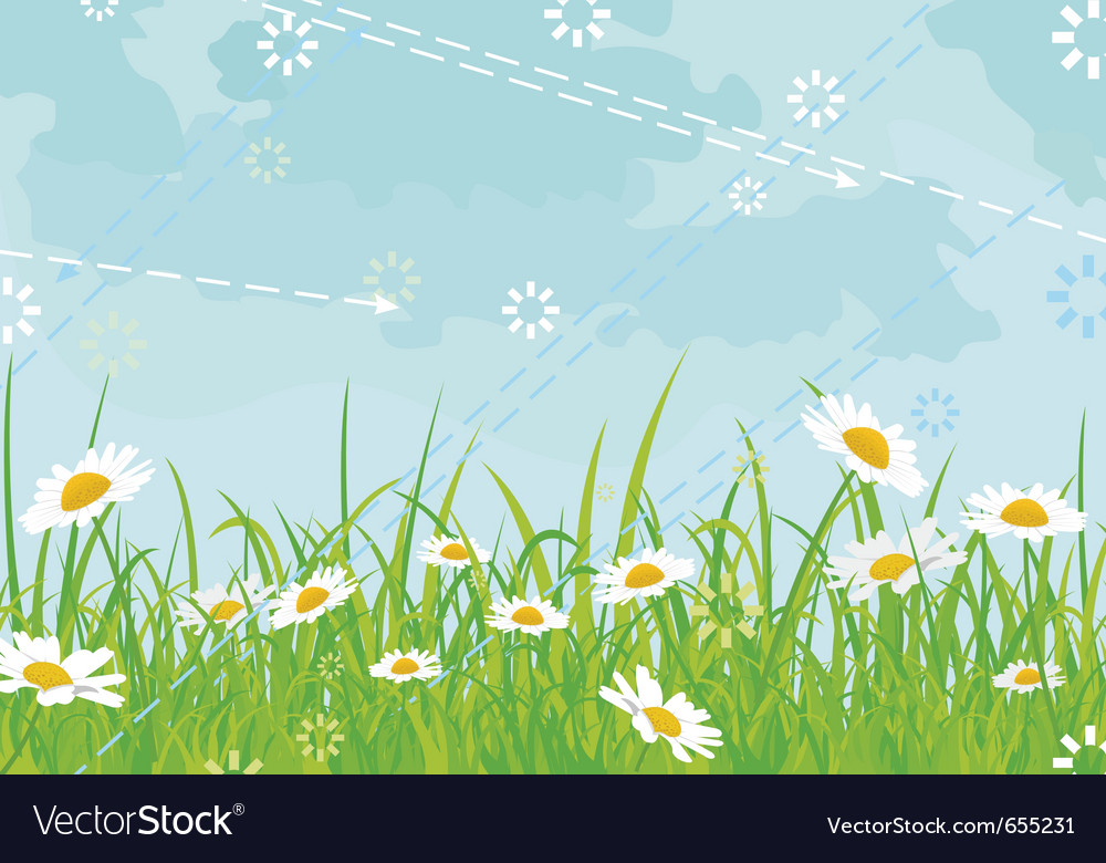 Daisy field background vector | Price: 1 Credit (USD $1)