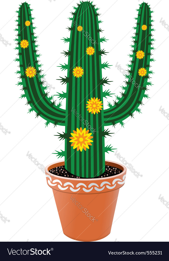 Pot cactus vector | Price: 1 Credit (USD $1)