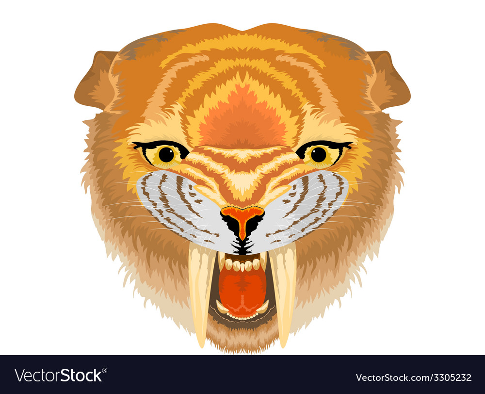 Samilodon sabre tooth cat vector | Price: 1 Credit (USD $1)