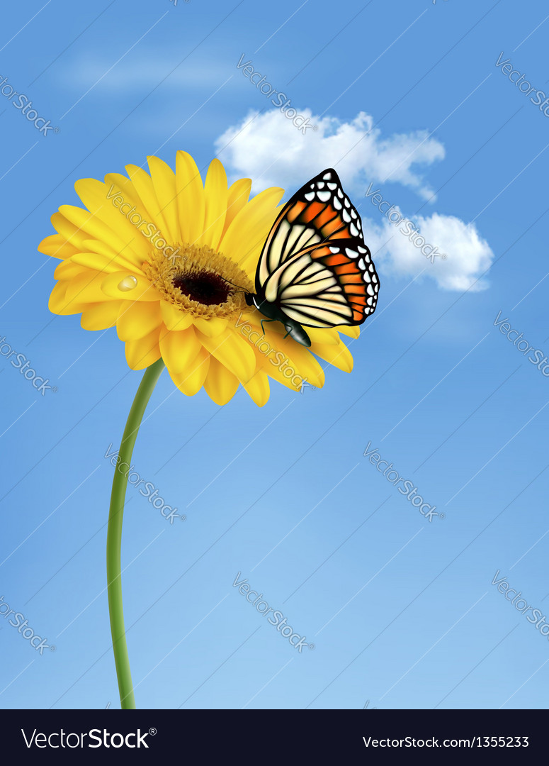 Nature summer yellow flower with butterfly vector | Price: 1 Credit (USD $1)