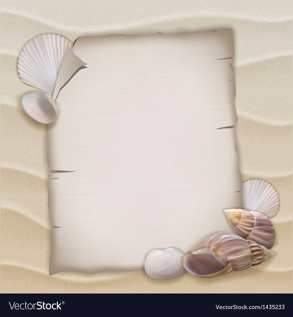 Shells and blank paper sheet vector | Price: 1 Credit (USD $1)