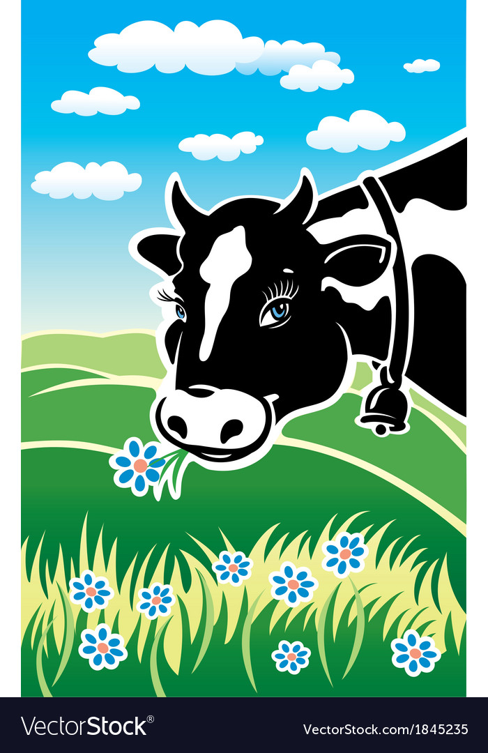 Kind cow on a meadow vector | Price: 3 Credit (USD $3)