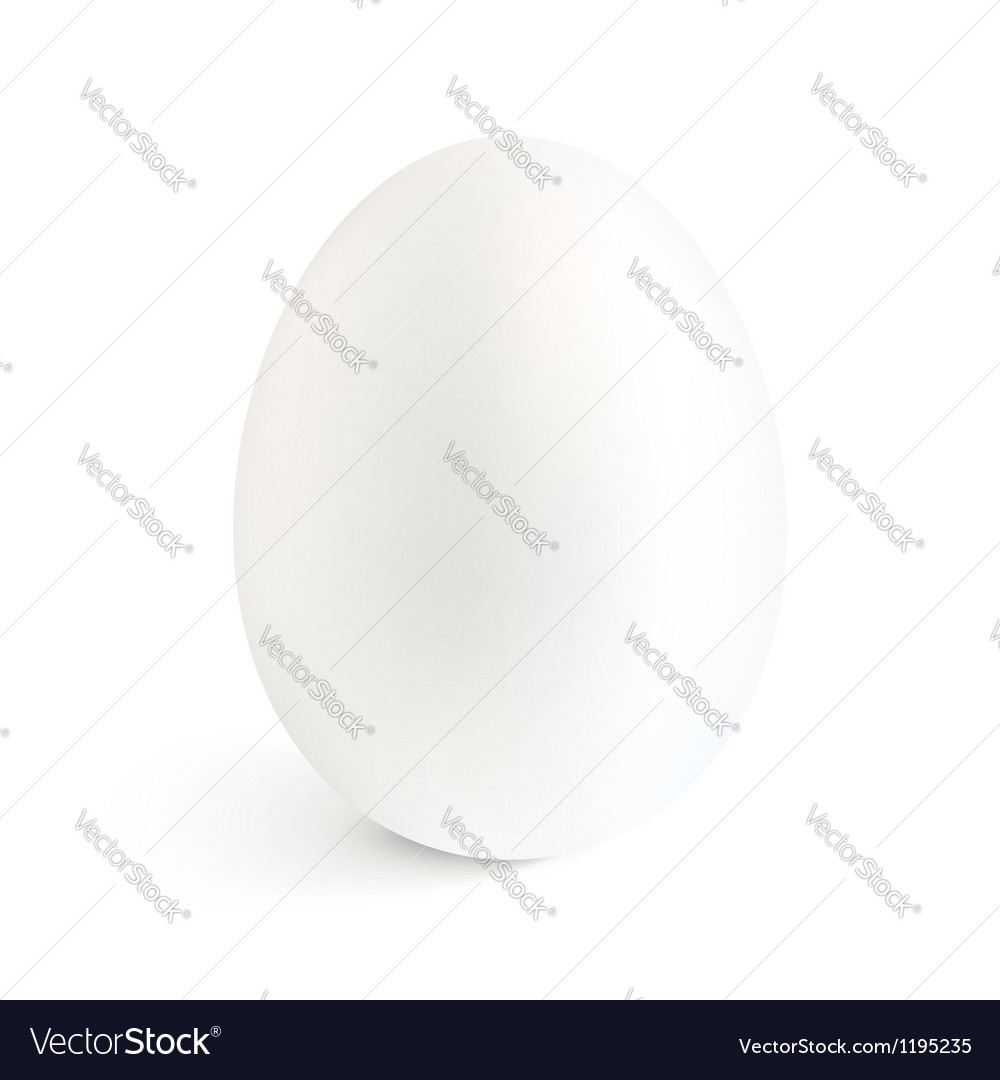 White isolated realistic egg with shadow vector | Price: 1 Credit (USD $1)