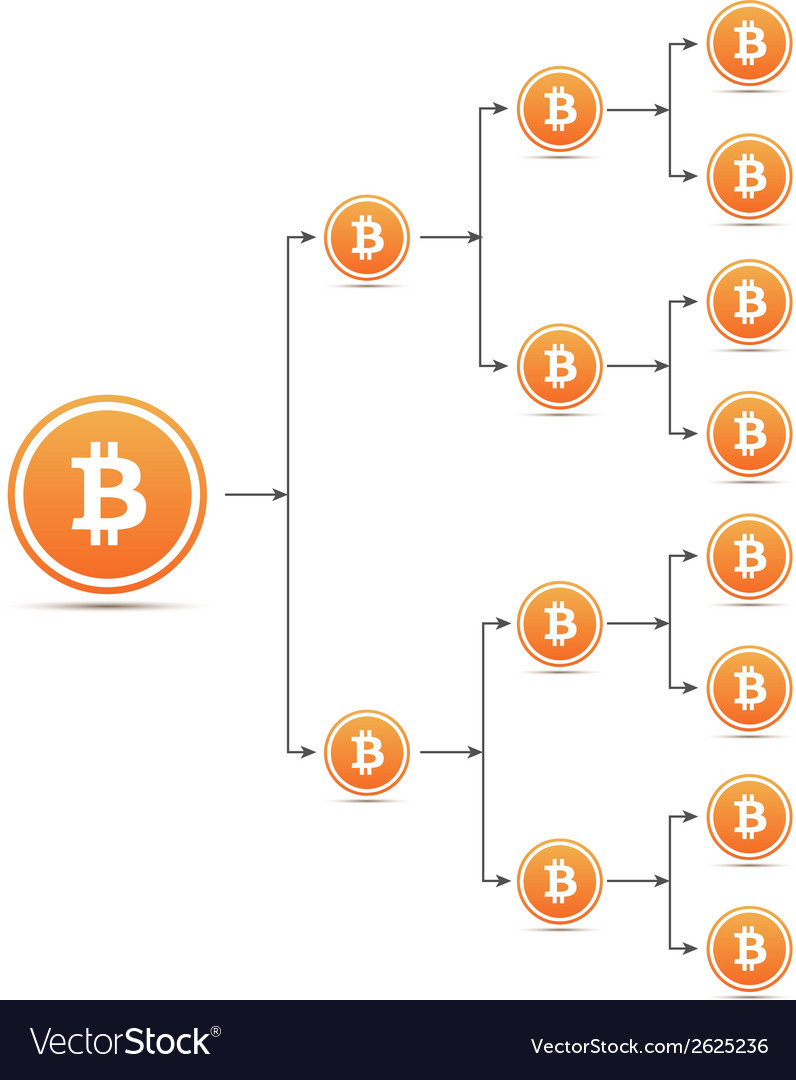 Bitcoin organization tree chart vector | Price: 1 Credit (USD $1)