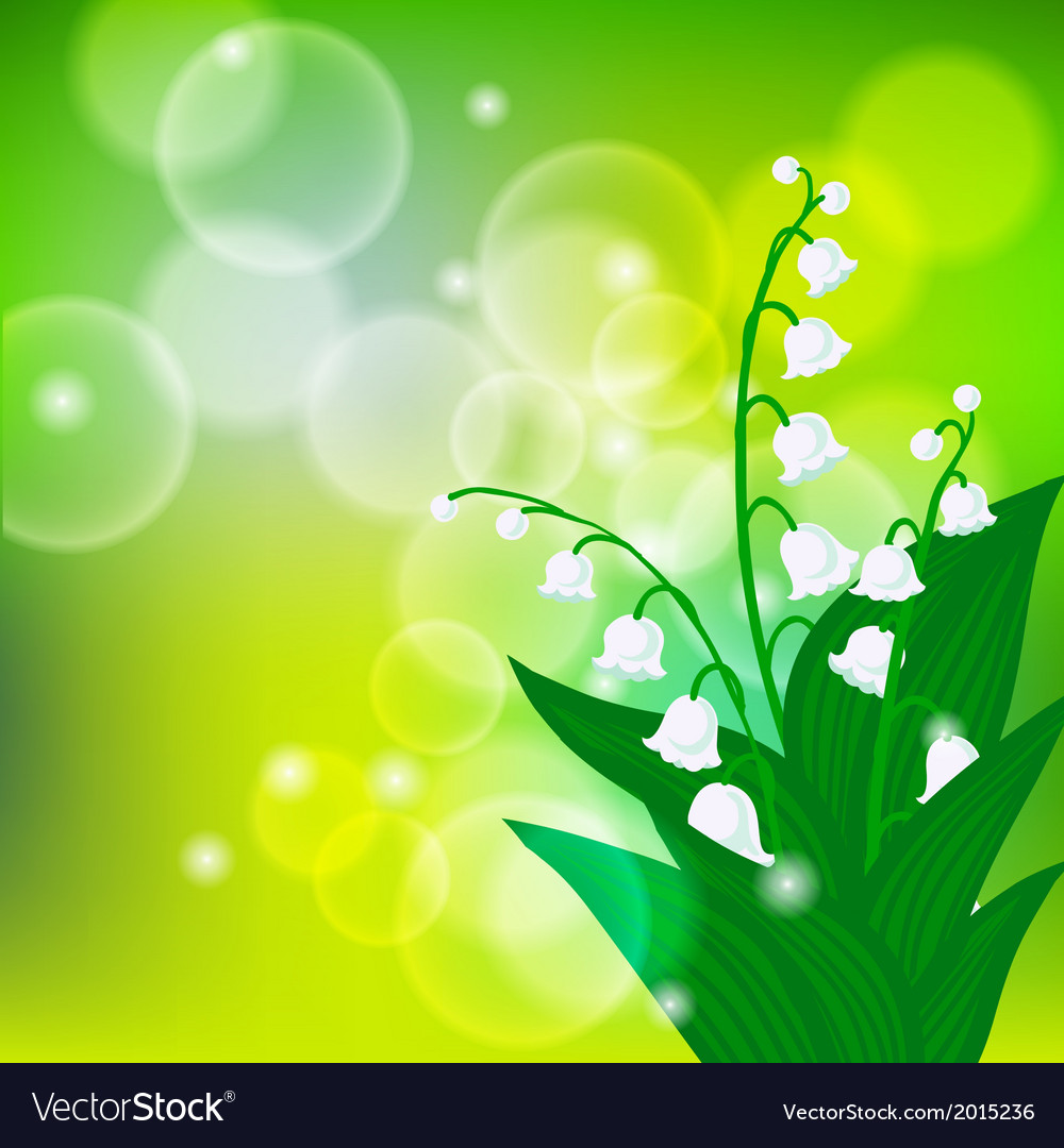 Card with field of lily-of-the-valley flowers vector | Price: 3 Credit (USD $3)