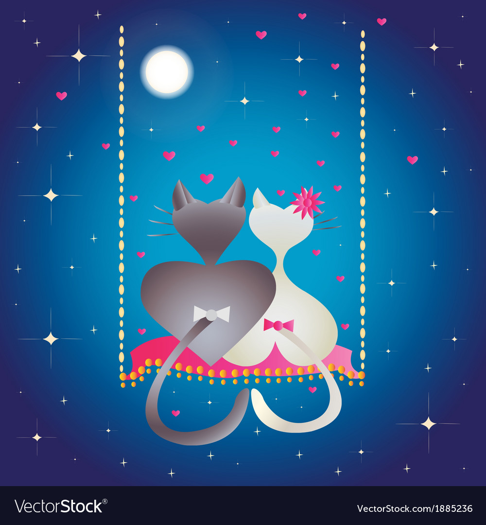 Male cat and pussycat at night vector | Price: 1 Credit (USD $1)