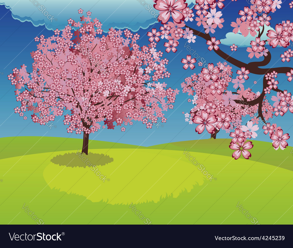 Blooming sakura tree on lawn vector | Price: 1 Credit (USD $1)