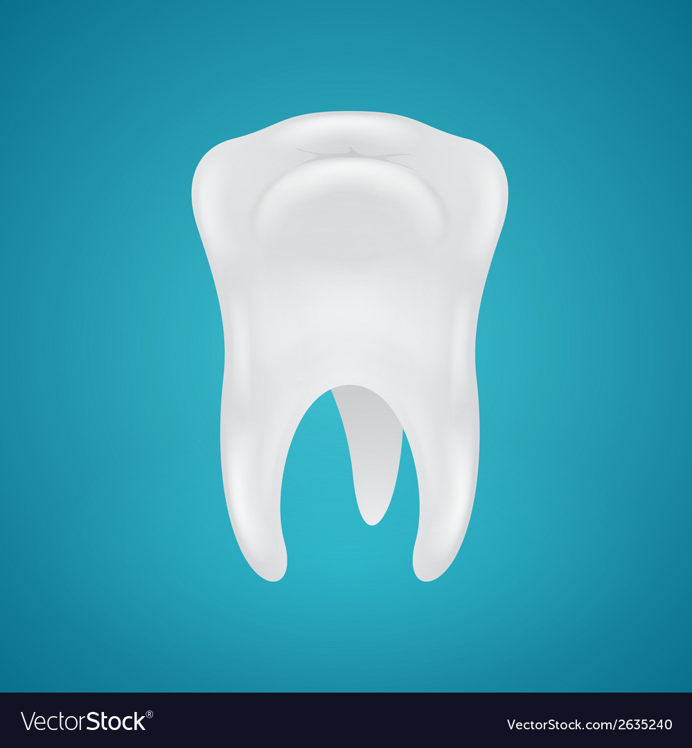 Human teeth on blue background vector | Price: 1 Credit (USD $1)