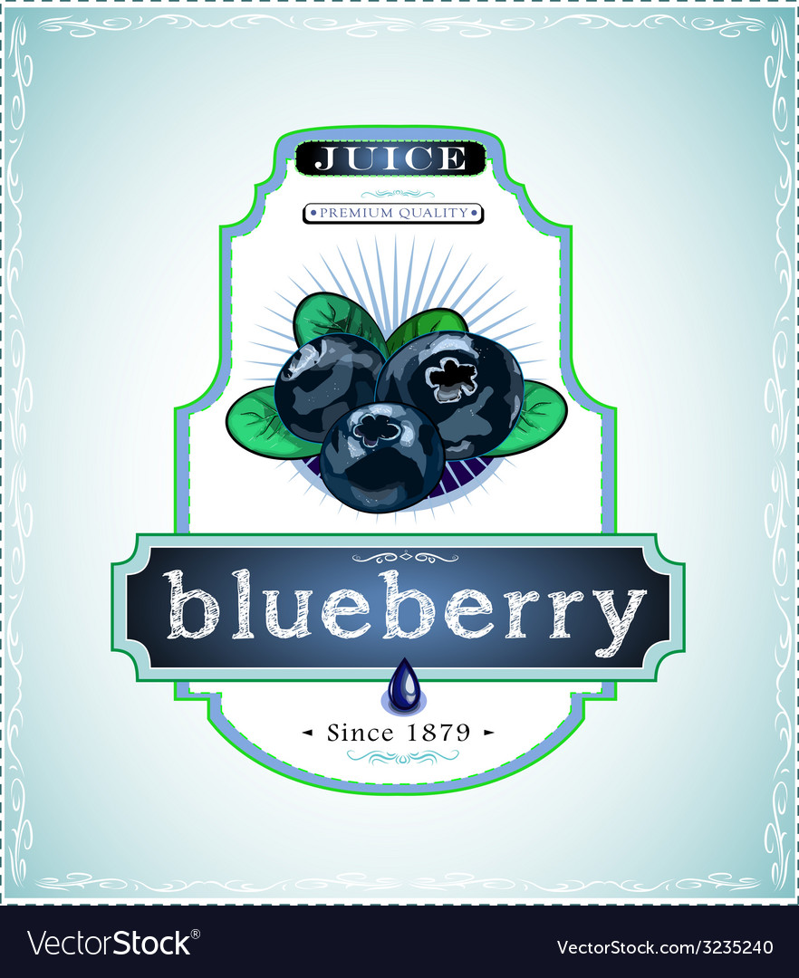 Three blueberries on product label or emblem vector | Price: 1 Credit (USD $1)