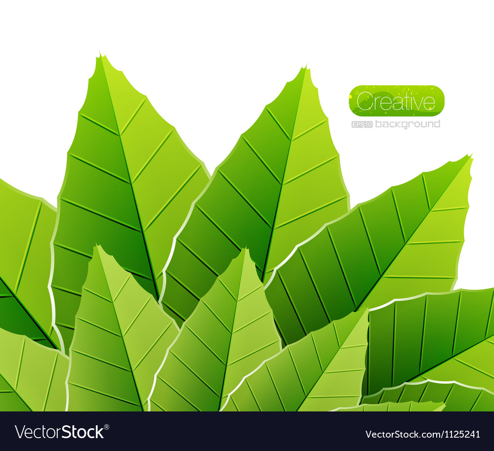 Green leaves nature background vector | Price: 1 Credit (USD $1)