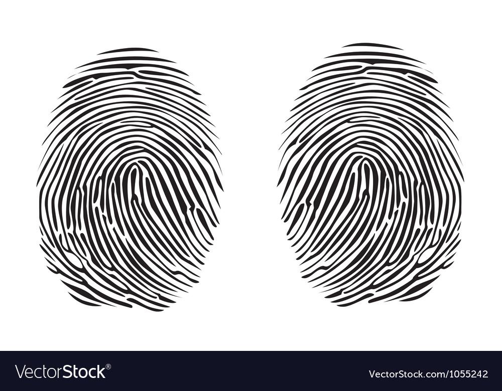 Fingerprints vector | Price: 1 Credit (USD $1)