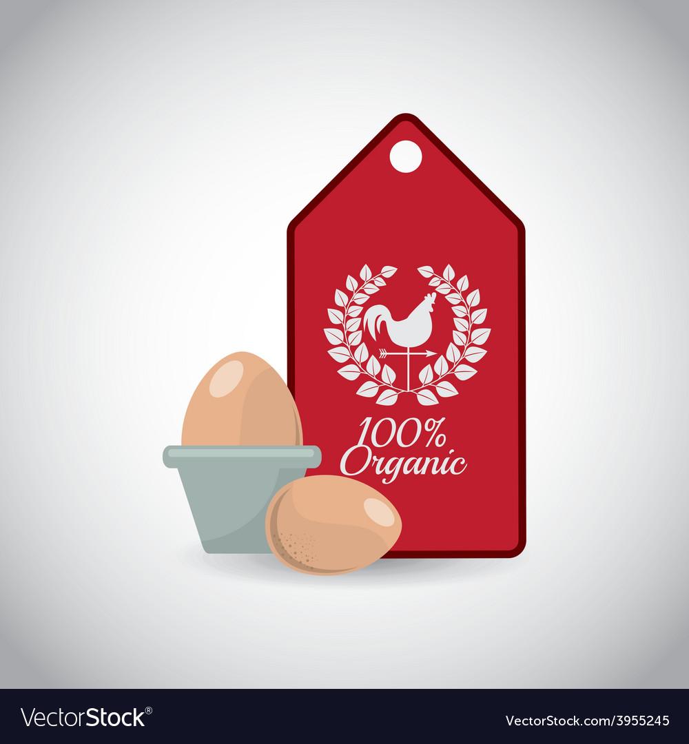 Fresh eggs vector   Price: 1 Credit (USD $1)