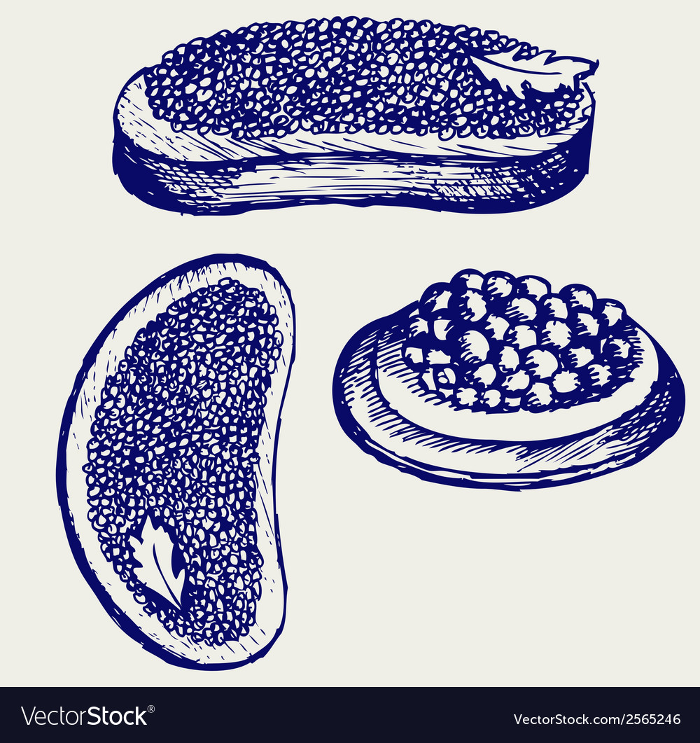 Sandwich with butter and caviar vector | Price: 1 Credit (USD $1)