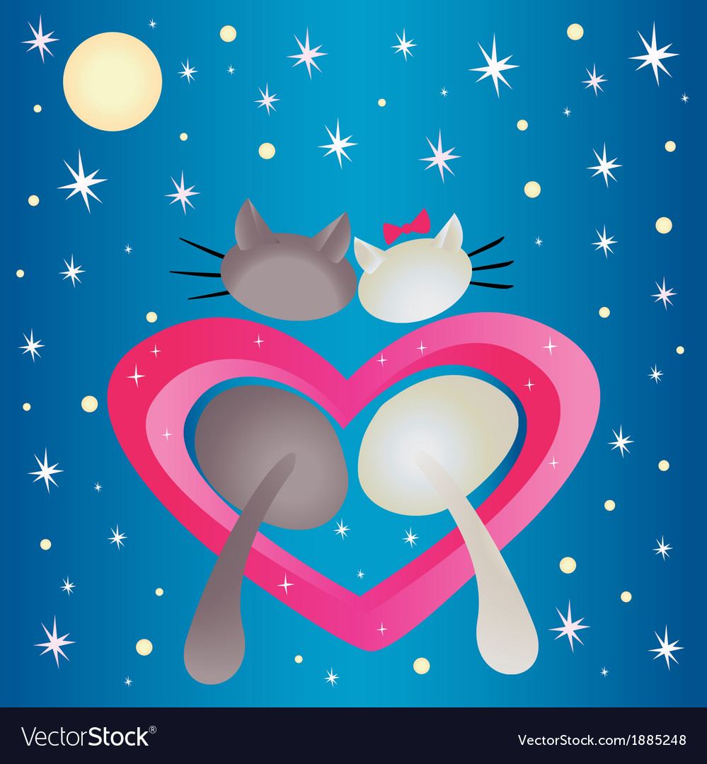 Male cat and pussycat vector | Price: 1 Credit (USD $1)