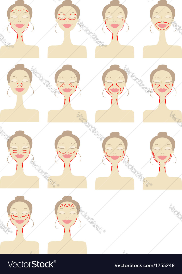 Massage lines on woman face vector   Price: 1 Credit (USD $1)