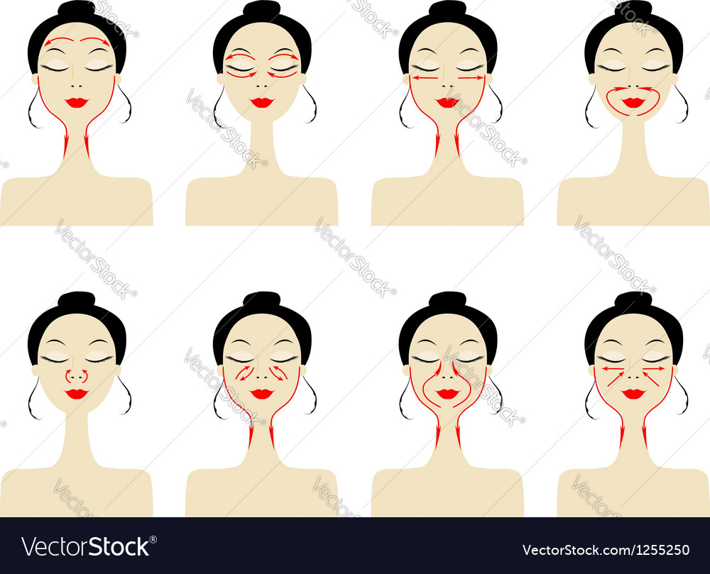 Massage lines on woman face vector | Price: 1 Credit (USD $1)