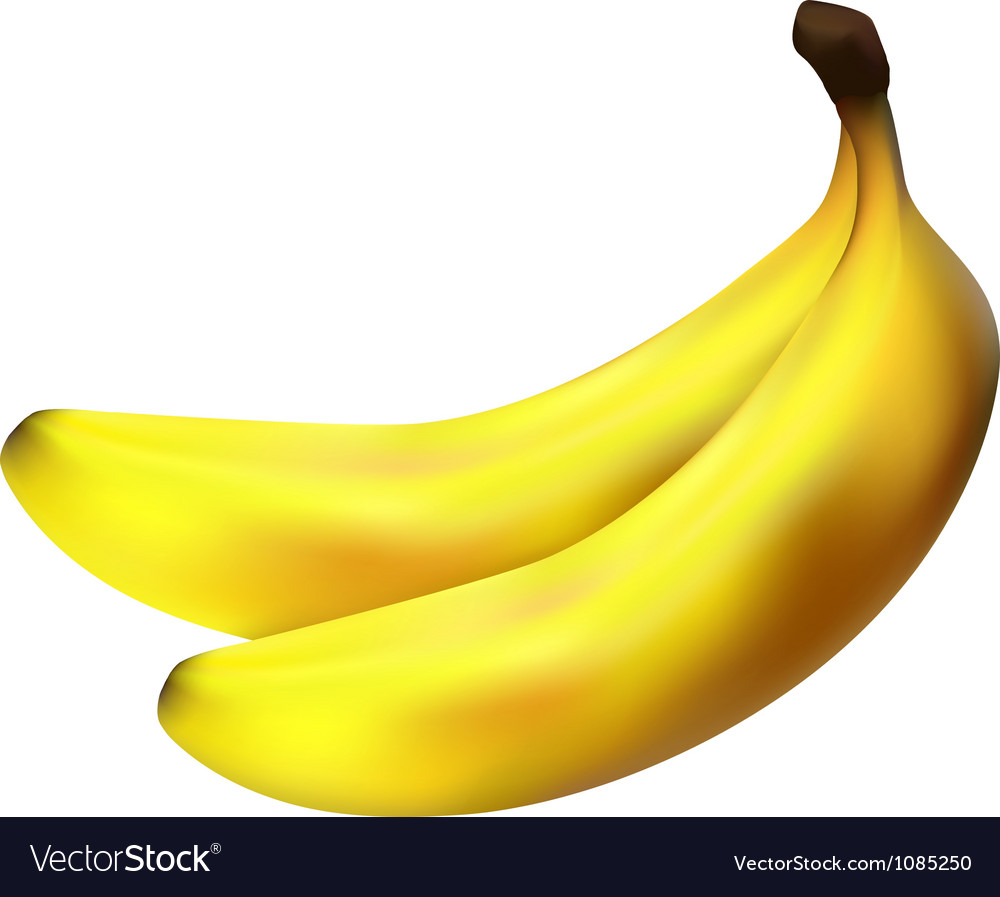 Two bananas vector | Price: 1 Credit (USD $1)