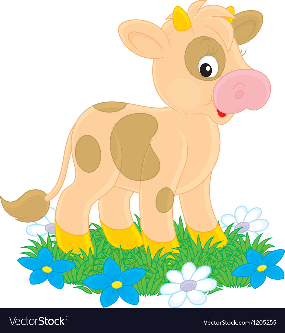Calf vector | Price: 1 Credit (USD $1)