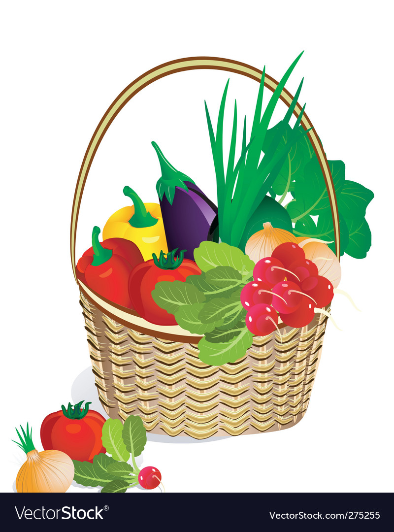 Vegetables in the basket vector | Price: 3 Credit (USD $3)