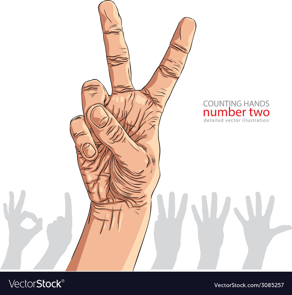 Numbers hand signs set number two detailed vector | Price: 1 Credit (USD $1)