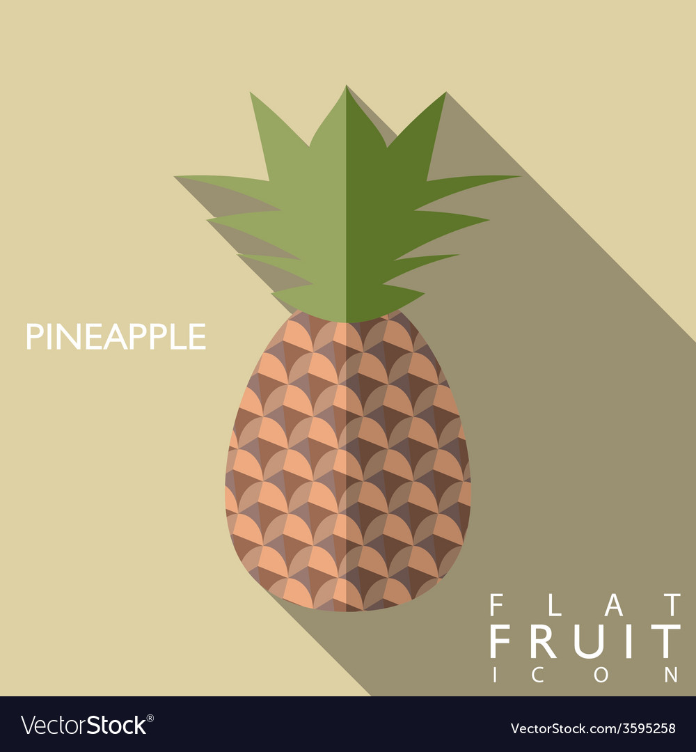 Pineapple flat icon with long shadow vector | Price: 1 Credit (USD $1)