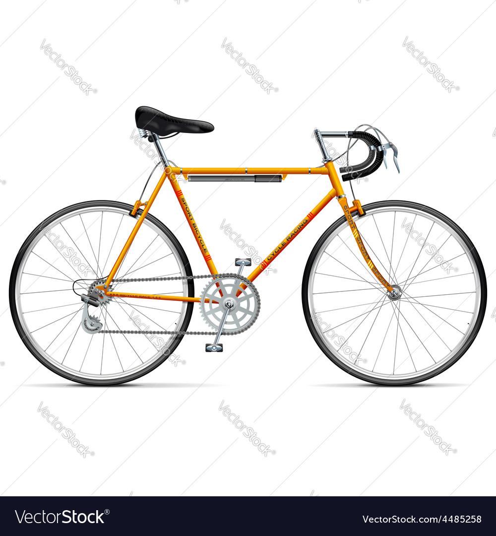 Sport bicycle vector | Price: 5 Credit (USD $5)