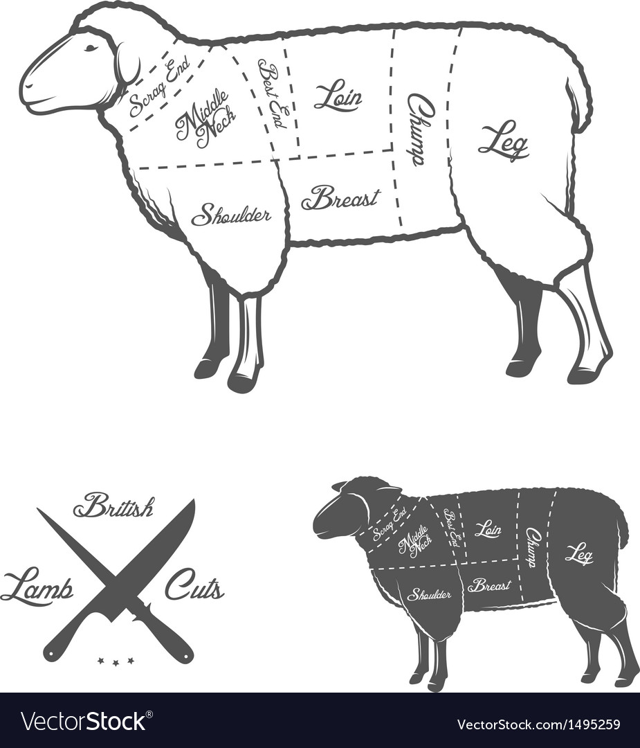 British cuts of lamb or mutton diagram vector | Price: 1 Credit (USD $1)