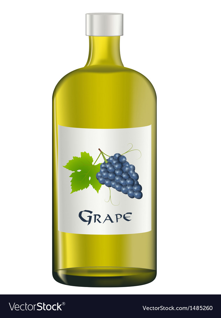 Grape vector | Price: 1 Credit (USD $1)