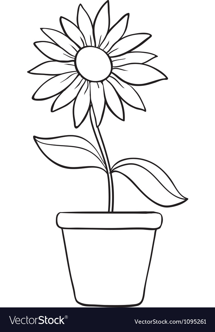 A flower and a pot sketch vector | Price: 1 Credit (USD $1)